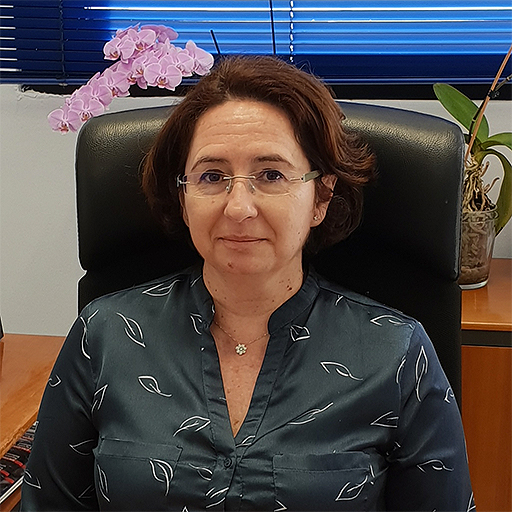 María José Castaño Martín